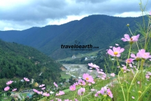 Manas-Panja-Arunachal-10