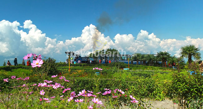 Darjeeling – the city of Rising Sun