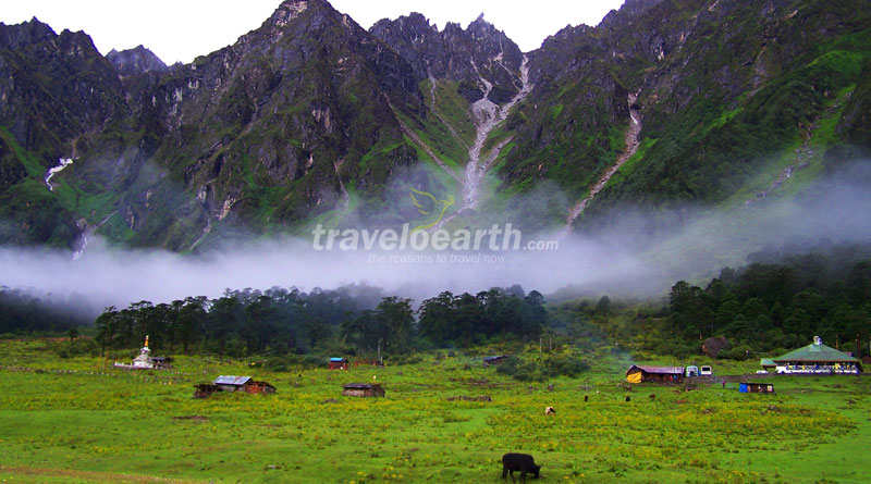 Gangtok – Lachung – Yumthang Valley