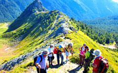 adventure tour to north east,adventure trip of north east,adventure holidays,adventure destinations of north east,north east adventure tour,adventure tour packages of north east,adventure packages of north east,Trekking,Rafting,Wild Life Safari,Angling,Biking,Paragliding,Helicopter Ride,Toy Train Ride