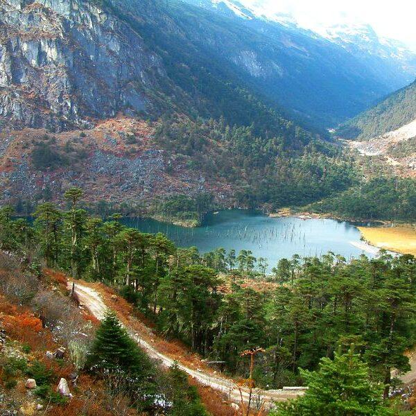 Wildlife with Arunachal